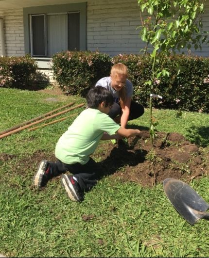 Lauren Wood planting tree with a child